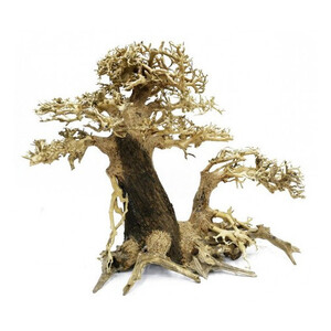 bonsai-multi-gauche-30x35cm.jpg